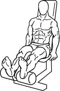 Seated-Leg-Curl